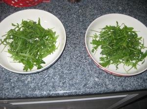 Haloumi Salad (4)
