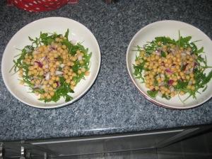 Haloumi Salad (5)