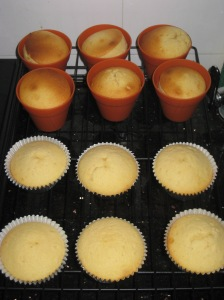 Rose Cupcakes (13)