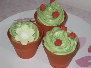 Rose Cupcakes (20)