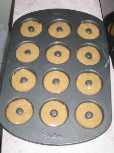 Mini Doughnuts (5)