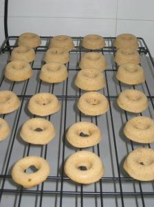 Mini Doughnuts (7)
