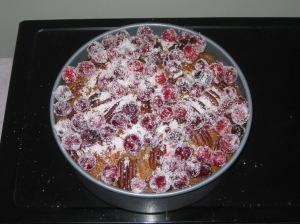 Posh Spice Cake (12)