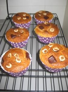 Choc Hazelnut Muffins (9)