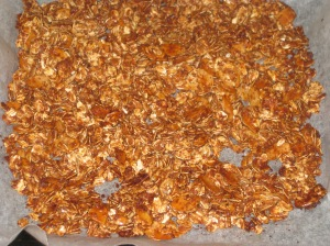 Chocolate Granola (3)