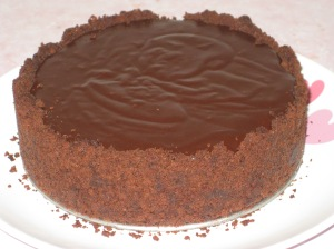 Mississippi Mud Pie (16)