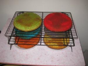 Rainbow Cake (9)