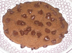 Giant Chocolate Chip Cookie (14)