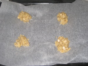 Anzac Biscuits (7)