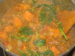 Sweet Potato, Spinach And Lentil Dahl (3)