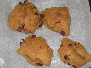Vegan Pumpkin and Cranberry Scones (9)
