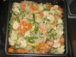 Vegetable Biryani (5)