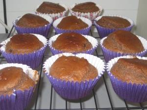 Choc Peanut Butter Muffins (10)