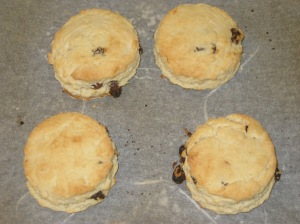 Vegan Scones (8)