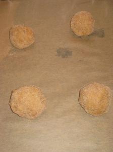 Snickerdoodles (7)