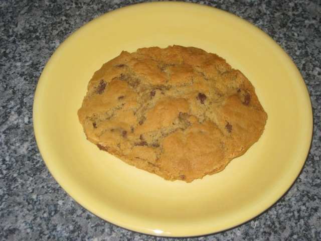 Vegan Chocolate Chip Cookies (10)