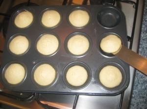 Jaffa Cakes (7)