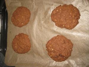 Choc Peanut Cookies (7)