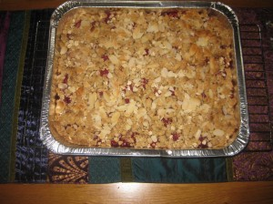 Raspberry Crumble Squares (10)