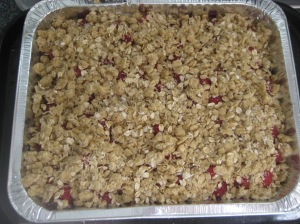 Raspberry Crumble Squares (7)