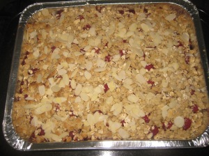 Raspberry Crumble Squares (8)