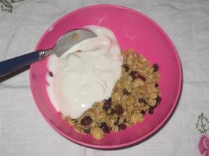 Street Vegan White Chocolate Macadamia Granola (4)