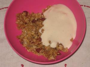 Vegan Soul Kitchen Basic Maple Almond Granola (1)